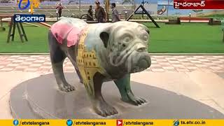 India's First Exclusive Dog Park Inaugurated in Hyderabad..