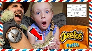 I Mailed Myself to the Desert With Pet Lizard *OMG* Met Coyote Peterson From Brave Wilderness (Skit)