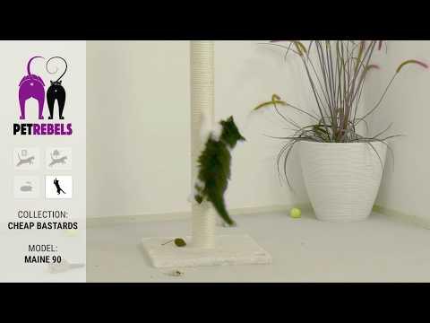Produktvideo av Petrebels Maine klorestativ katt 90 cm