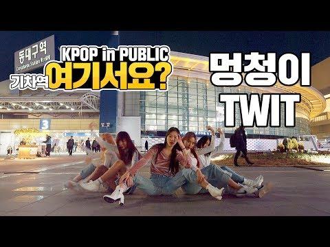 [여기서요?] 화사 HWASA - 멍청이 TWIT | 커버댄스 DANCE COVER | KPOP IN PUBLIC @동대구역