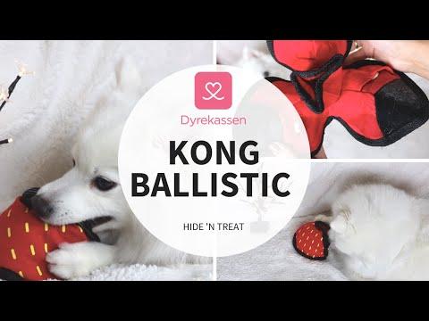 Produktvideo av Kong Ballistic Hide 'N Treat Aktivitetsleke