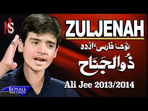 Zuljenah  علی جی شگفت انگیز بچه پاکستان