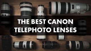 Best Canon Telephoto Lenses: 2019 Camera Lens Comparison