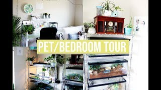 PET ROOM TOUR (sharing a bedroom with 10+ pets)