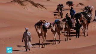 موريتانيا: السياحة لمكافحة الإرهاب     -