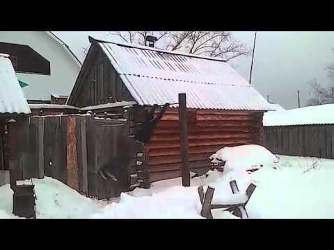 Gimnastyka artystyczna prosto z rosyjskiej wsi