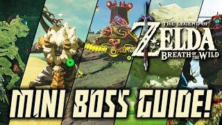 ALL MINI BOSSES GUIDE! - The Legend of Zelda: Breath of The Wild