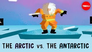 The Arctic vs. the Antarctic - Camille Seaman