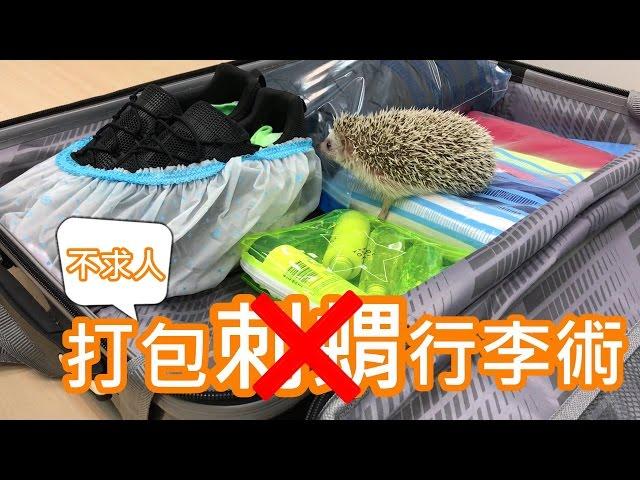 【行李打包】搭飛機必帶6樣物品,你準備了嗎?