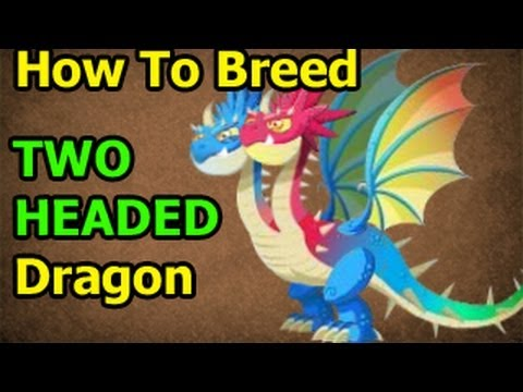 TWO HEADED DRAGON Dragon City How To Breed Formula From Deus Vault