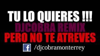 Tu Lo Quieres Pero No Te Atreves - Dj Cobra (Perreo2013)