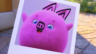 Sunny Bunnies | Taking The Cutest Picture 🐽  | SUNNY BUNNIES COMPILATION | Videos For Kids