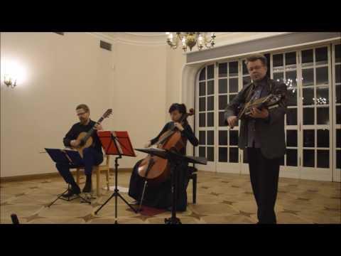 Arto Jarvela - Ecossaise (Arto Järvelä)  performed by Arto & Duo Vitare