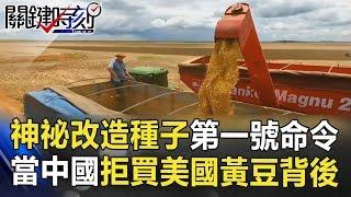 神祕「改造種子」第一號命令 當中國拒買美國黃豆背後… 關鍵時刻 20180711-4 朱學恒 黃世聰 黃創夏 丁學偉