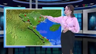 Bản tin thời tiết tối (23/01/2019)
