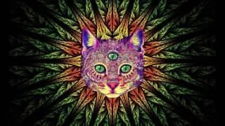Best Rave/Party Songs Mix #1: PSY TRANCE, MINIMAL, GOA TRANCE, HEAVY BASS (song list in description)