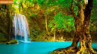Relaxing Music and Soothing Water Sounds | Calming Music | Nature Sounds With Flute Music
