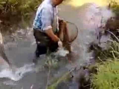 Вот это рыбалка БЛЯ