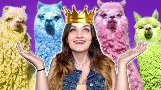 I AM LORD OF THE ALPACAS!!! ...Don't Ask, Just Click