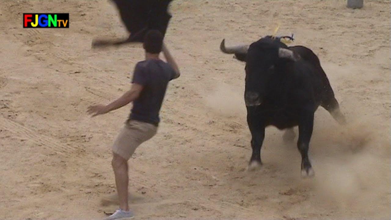 4 Toros Festa La Vila 2012 - La Vilavella