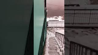 Joshimath snowfall  24-01-2019