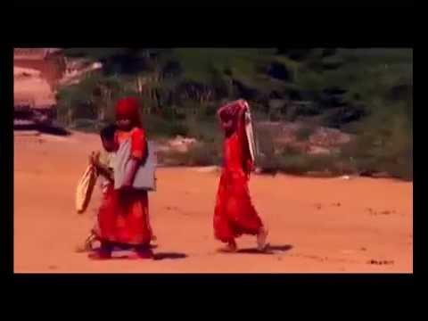تحديات ومشاكل التعليم في الريف اليمني