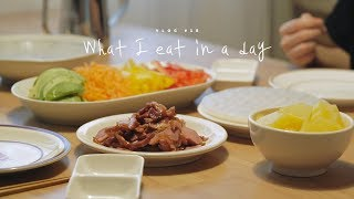 [SUB] VLOG #18  What I eat in a day, kimchi fried rice and spring roll | Honeykki 꿀키
