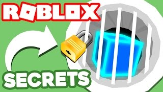 6 ROBLOX SECRETS