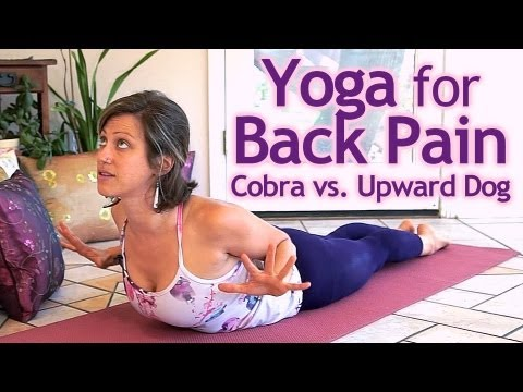 beginners yoga for back pain how to do upward facing dog