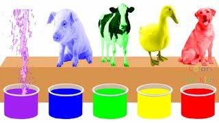 Farm Animals Bathing Colors Fun | Learn Colors for Children Kids Toddlers To Learn With Animals