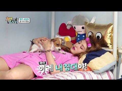 [웹오리지널] I.O.I Somi 아이오아이 '소미캠' 소미는 우아우아해