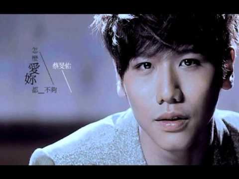 蔡旻佑-怎么爱你都不够 (cover)