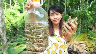 Yummy cooking grasshopper recipe - Cooking skill