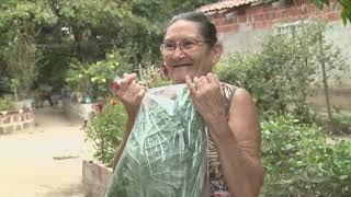 Projeto Horta Solidaria já acontece desde 2006 em Fortaleza   Jornal da Cidade
