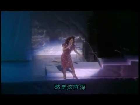 邓丽君 - 东山飘雨西山晴 (with lyrics sing along)