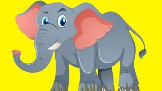 Animal Sounds Songs | A Kids Learning Videos Collection