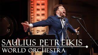 Saulius Petreikis - Saulius Petreikis World Orchestra - Skrydis