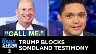 Trump Stops Sondland's Testimony & Dems Protect the Whistleblower   The Daily Show