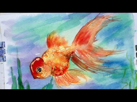 How to paint a fancy goldfish in watercolor - thefrugalcrafter .  - ZUKGj50AV60 -