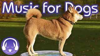 Soothing Classical Music for Dogs - Relax Your Dog with 15 Hours of Lullabies!