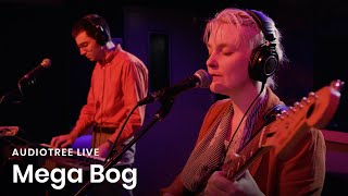 Mega Bog on Audiotree Live (Full Session)