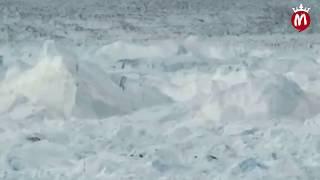 اعلان برنامج رامز تحت الثلج البرومو الرسمى     -