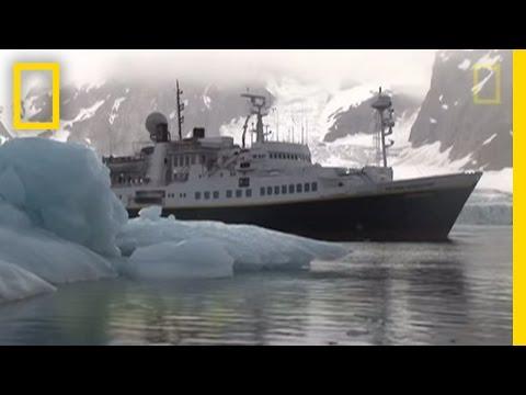 Killer Whales vs. Minke Whale | National Geographic