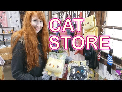 Samurai town with a CAT STORE