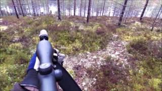 Jakt Med Bissjöskogens Kalla