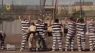 Thế Giới Động Vật | Bên trong nhà tù khắc nghiệt nhất nước Mỹ - Thuyết minh
