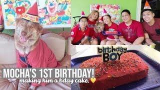 VLOG: Throwing Our Dog a Birthday Party! + DIY Dog Birthday Cake! (Philippines) | Mara Adriano