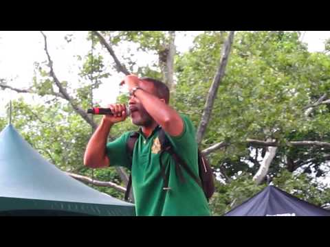 Large Professor- The Mad Scientist (Remix) @ Central Park, NYC