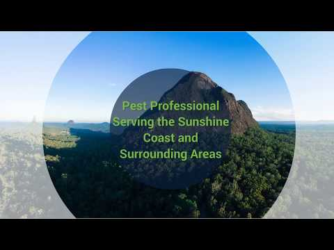 Termite & Pest Control Sunshine Coast - Radar Pest Control