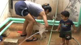 Samay helps with Samuel's bath